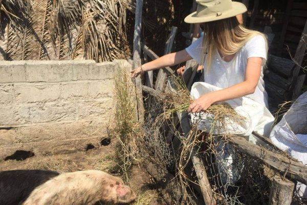 marine-research-conservation-mozambique-volunteer-african-impact (16)